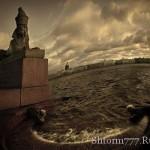 Мистические сфинксы в Санкт- Петербурге