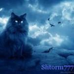 Из за чего кошкам приписывают магические способности