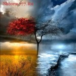 Потусторонний мир, нет наград и наказаний…