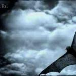 Поцелуй летучей мыши или пристанище злых духов