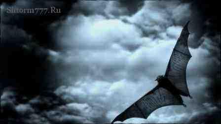 Летучая мышь, вампиры