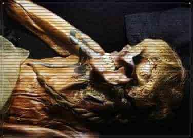 Алтайская принцесса, проклятие мумии