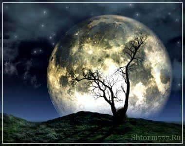 Почти все про Луну