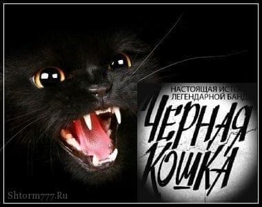 """О банде """"Черная кошка"""""""