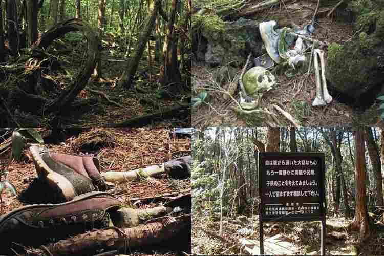 Лес самоубийц-4