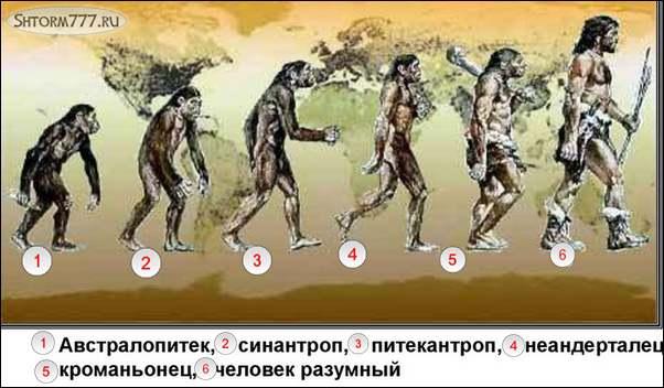 Синантропы-3