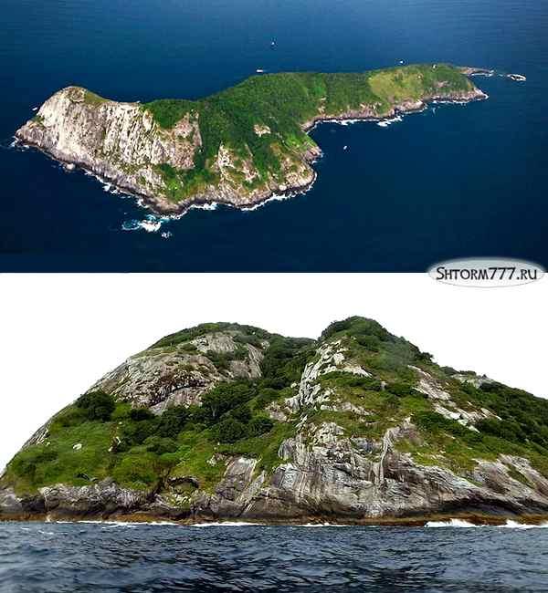 Змеиный остров-1