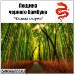 Лощина черного бамбука (Китай). Описание. Аномалии