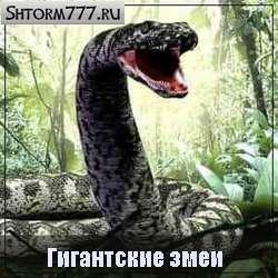 Гигантский змей