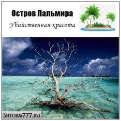 Остров Пальмира. Убийственная красота