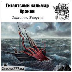 Гигантский кальмар (Кракен). Описание. Встречи