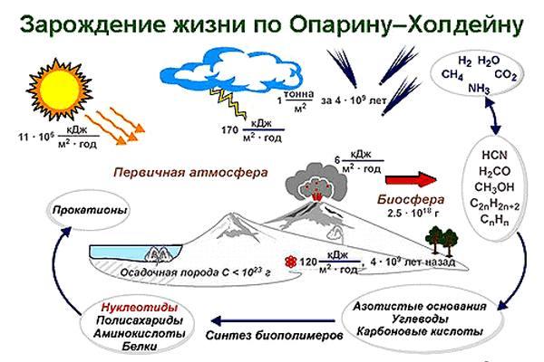 Происхождение жизни на Земле-3