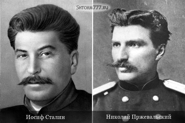 Сталин и Пржевальский-2
