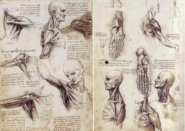 Леонардо да Винчи-5