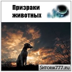 Призраки домашних животных