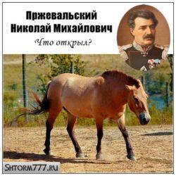Пржевальский Николай Михайлович. Что открыл?