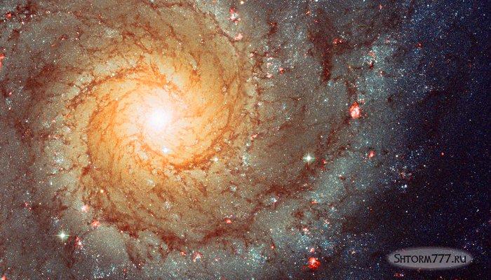 Жизнь во Вселенной-1