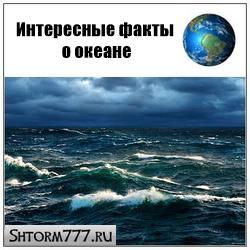 20 интересных фактов о океане