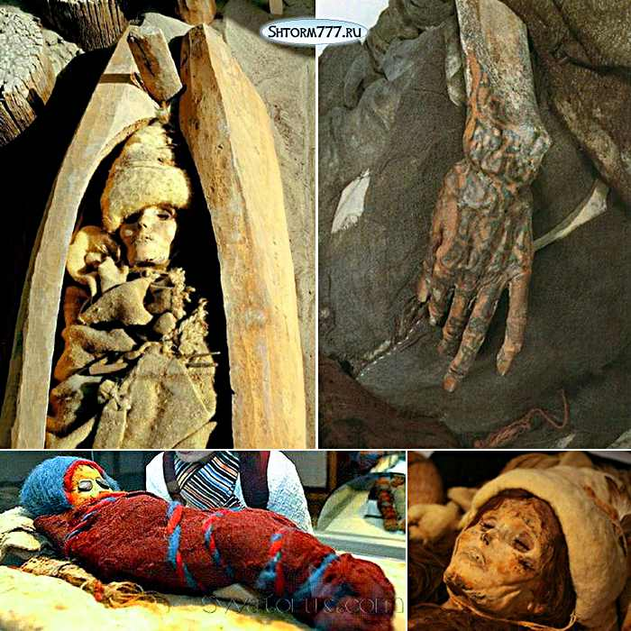 Таримские мумии, история