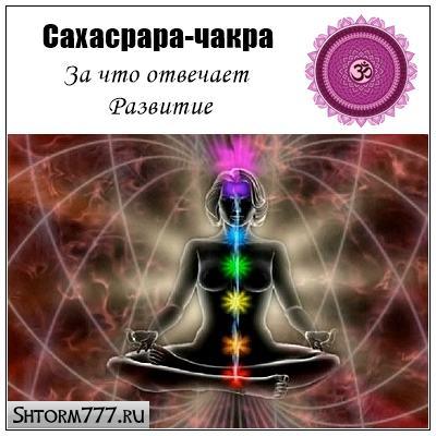 Сахасрара-чакра. За что отвечает