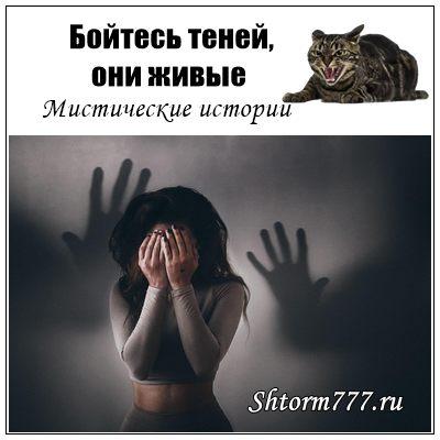 Бойтесь теней, они живые (Мистические истории)