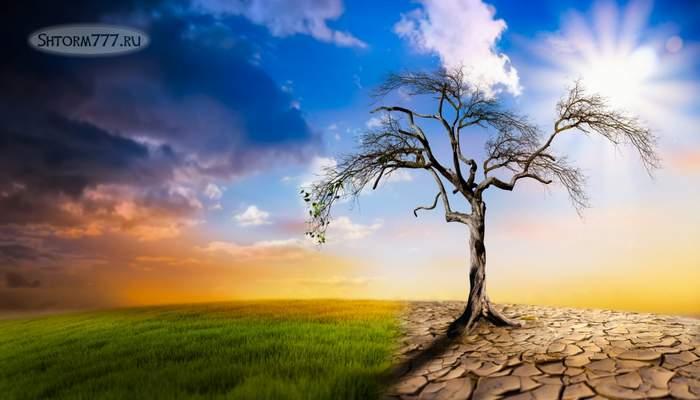 Глобальная экологическая катастрофа